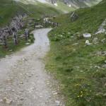 Wanderweg runter nach Schlinig