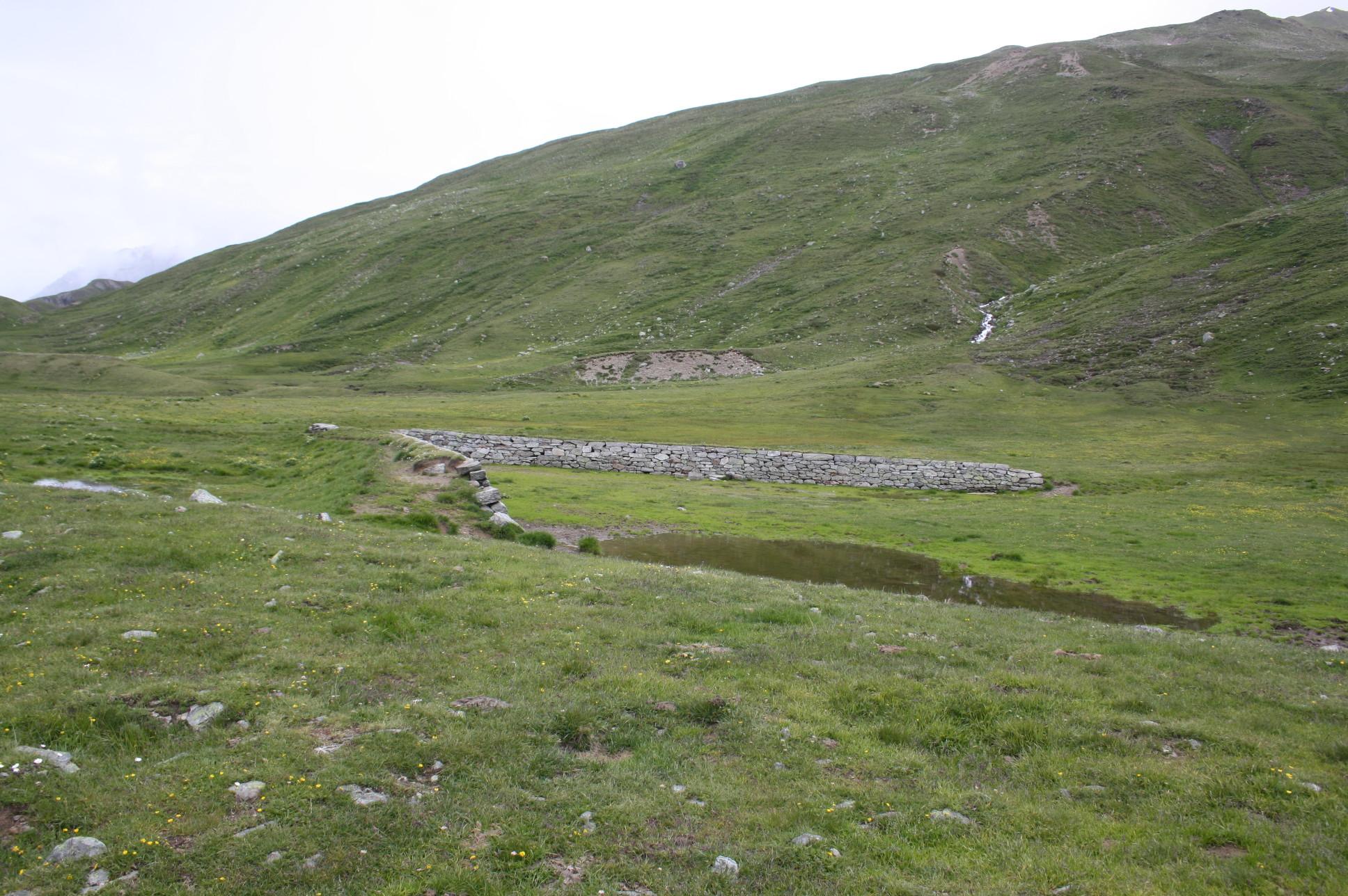 Verzollungsanlage für Vieh