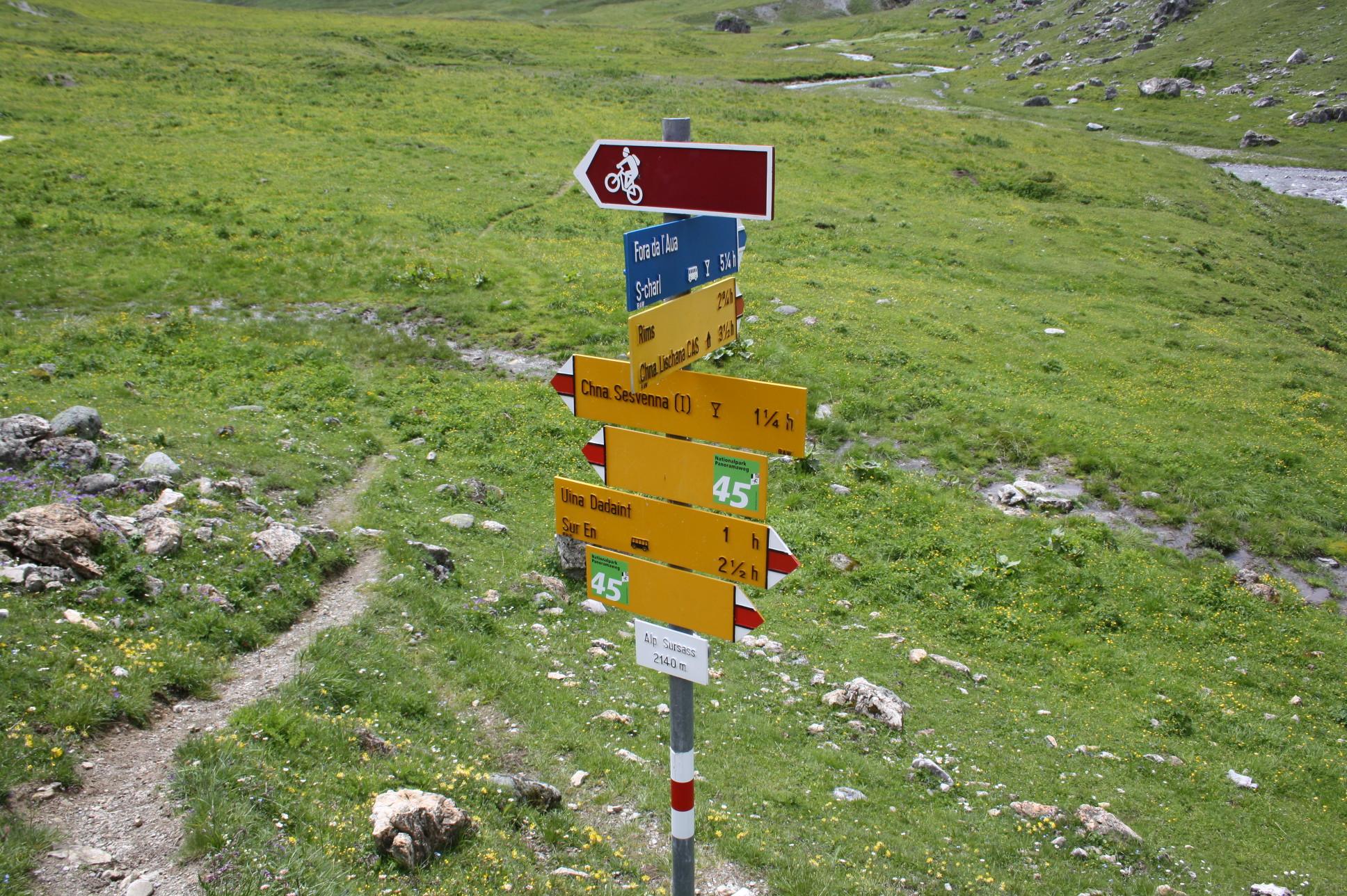 Auf der Alp Sursass